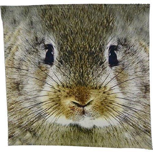 Serviette essuie lapins