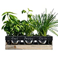 Viridescent Indoor Herb Garden Kit - Kitchen Wooden Windowsill Planter Box with Herb Seeds. Best Gift Idea!