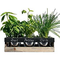 Viridescent Kräutergarten Kit, Holz, ideal für Fensterbank. Das Perfekte Geschenk, Hochwertig. Kaufen sie es heute im Schlussverkauf!