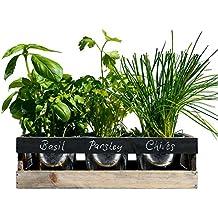 Viridescent Indoor Herb Garden Kit - Kitchen Wooden Windowsill Planter Box with Herb Seeds. Best Gift Idea!