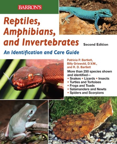 reptiles-amphibians-and-invertebrates-an-identification-and-care-guide-reptile-keepers-guide