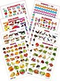 #6: Kid's 1st Learning Charts [S] : Set 28 (English Alphabets, Numbers 1-100, Colours, Flowers, Animals, Birds, Fruits & Vegetables)