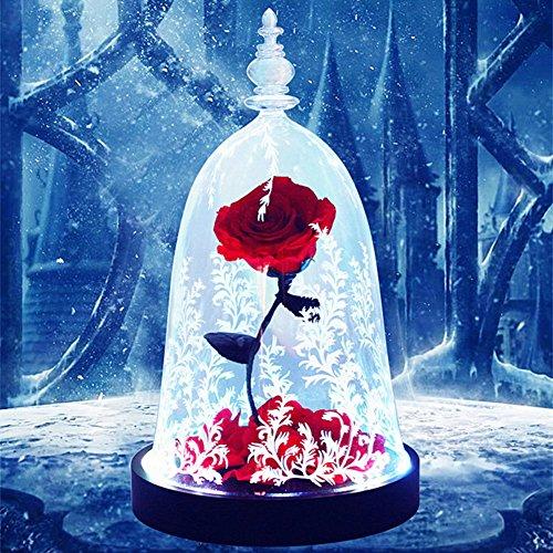 ❥Only Rose Rose éternelle,Dome verre Base en bois massif Lumières LED colorées Romantique Fleur Saint-Valentin Noël Anniversaire (Boîte Cadeau de Luxe)-Rouge 16x28cm(6x11inch)