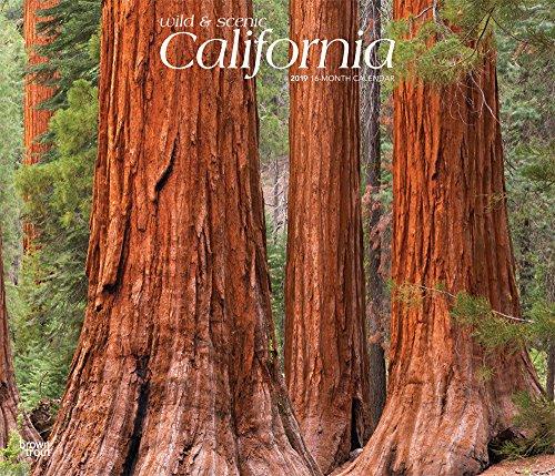 California - Wild & Scenic - Kalifornien 2019 - 18-Monatskalender mit freier TravelDays-App: Original BrownTrout-Kalender - Deluxe