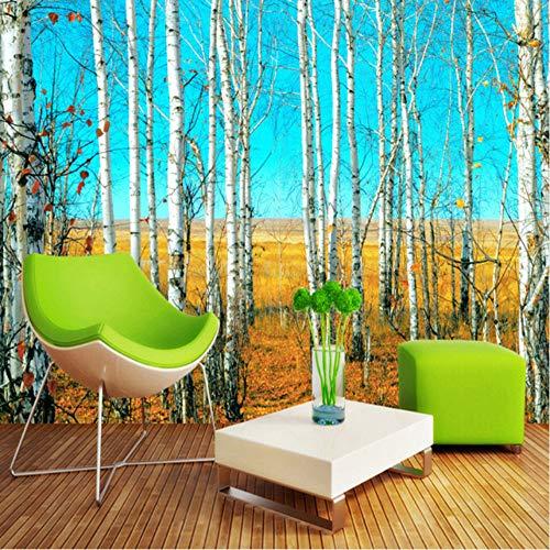Fushoulu Benutzerdefinierte Größe Hd Birkenwald 3D Natur Landschaft Fototapete Große Wandmalerei Hintergrund Wohnzimmer Wandbild Papier-400X280Cm