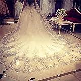 Brautschleier mit Kamm 3.5M Lange Spitze Rand Hochzeit Brautschleier Echt Bild Hoch Qualität Blume Dom , Ivory