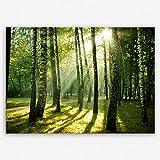 ge Bildet Hochwertiges Leinwandbild Naturbilder Landschaftsbilder - Wald - Natur Blumen Wald Sonnenschein Grün - 40 x 30 cm Einteilig | Wanddeko Wandbild Wandbilder Wohnzimmer deko Bild | 2213 I