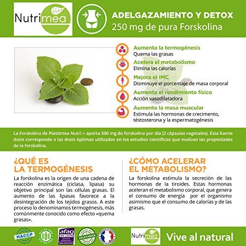 Quemagrasas Natural Adelgazante Termogenico Adelgazar