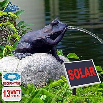 gartenbrunnen solar brunnen solarteichpumpe solar springbrunnen solar wasserspiel froschk nig. Black Bedroom Furniture Sets. Home Design Ideas