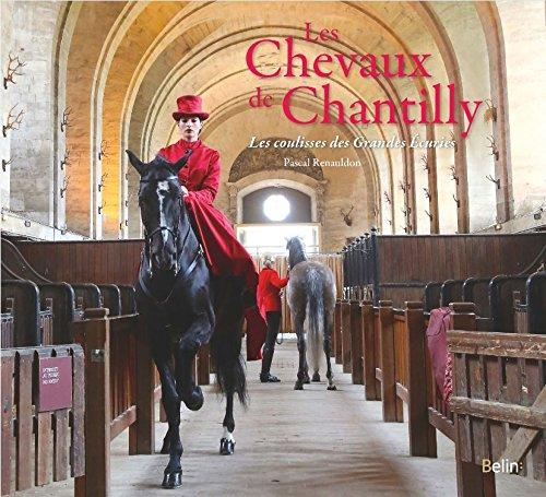 Les Chevaux de Chantilly - Les coulisses des Grandes Ecuries
