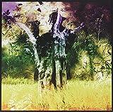 Meeting of the Waters Rsd 2017 [Vinyl LP]