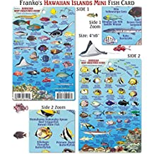 Mini Hawaiian Reef Creatures Fish ID for Scuba Divers and Snorkelers