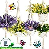 Migarda - Makramee Blumenampel Baumwollseil - 4er Set - mit Überraschungs-Schmetterlinge - Deko Hängeampel zum Aufhängen außen und innen - Pflanzen Blumen Halter - Balkon und Zimmer - inkl eBook
