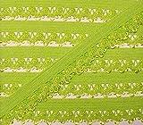 3 m Wäschespitze/elastische Rüsche mit zarter Bogenkante 13 mm (apfel grün)