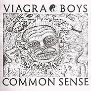 Common Sense [Explicit]
