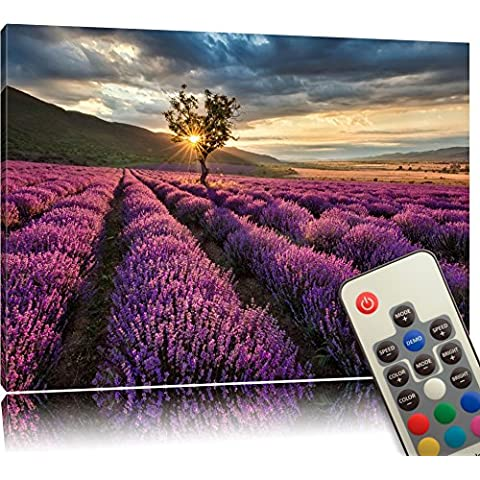 LED Canvas (Illuminated) - light-up Picture with