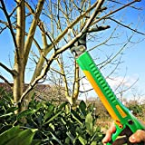 GRÜNTEK Lange Gartenschere LAMA 410 mm mit Klinge 55 mm aus japanischem SK5 Stahl, ByPass, Antihaftbeschichtet, mit bequemen Griffen, Gelb-Grün