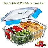 SELEWARE Frischhaltedosen Glas Lunchbox 100% bpa frei Luftdicht Auslaufsicher mit 3 fächern Ofen Mikrowellengeeignet sicher für Gefrierschrank und Spülmaschine (1,04 Liter, Rechteck, Blau)