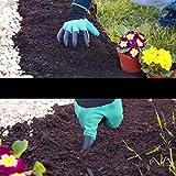 eiito 2x Garten Handschuhe, Größe M/L 17,8–21,6cm Test