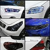 brighters - Pegatina de vinilo para faros de coche, impermeable, 12 colores