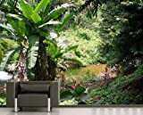 Selbstklebende Fototapete - Bananenbaum im Dschungel - 180x150 cm - Tapete mit Kleber – Wandtapete – Poster – Dekoration – Wandbild – Wandposter – Wand – Fotofolie – Bild – Wandbilder - Wanddeko