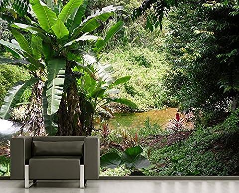 """selbstklebende Fototapete """"Bananenbaum im Dschungel"""" 220x180 cm - eigene Herstellung von Bilderdepot24, faire Produktion in Deutschland"""