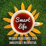 Smart Life - Musica Rilassante Soft Ambientale Meditativa per Dormire Riposare Rimedio Naturale Terapia Chakra e Pranayama Yoga