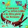 Pourquoi le crocodile a le dos plein de bosses