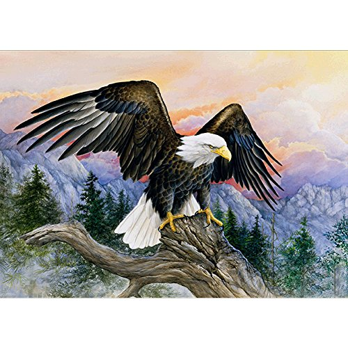 5D DIY Diamond Painting by Numbers Kits, Crystal Embroidery Cross Stitch Rhinestone Mosaic Drawing Art Craft Home Wall Decor, Eagle