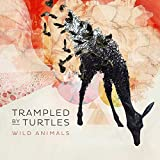 Songtexte von Trampled by Turtles - Wild Animals