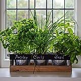 jardn de hierbas interior de viridescent caja de madera jardinera para alfeizar de cocina el kit contiene todo lo que necesita para cultivar sus