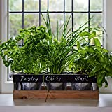 Indoor Herb Garden Kit - by Viridescent - Wooden Windowsill Planter Box for the Kitchen. Includes All You Need to Grow Your Own Herbs. Personalise with Chalk Provided. Perfect Xmas Gift Idea!