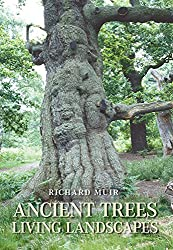 Ancient Trees, Living Landscapes (Revealing History (Paperback))