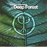 The Essence Of Deep Forest