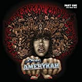"Afficher ""New amerykah"""