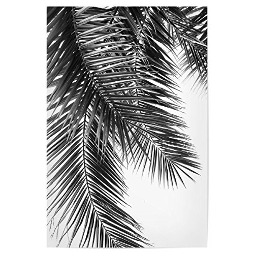 artboxONE Poster 30x20 cm Black and White Palm Leaves von Künstler Lexie Greer (Palm Leaf White)
