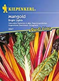 Mangold Bright Lights bunt