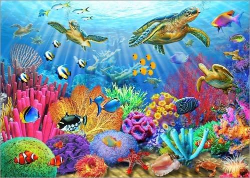 Alubild 40 x 30 cm: Korallenriff mit Schildkröten von Adrian Chesterman/MGL Licensing -