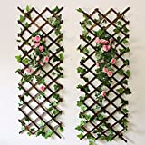 YOUMU Holz Wand-Gitter Expansion Garden Flower Plant Klettern Zaun braun Maße 150x 30cm