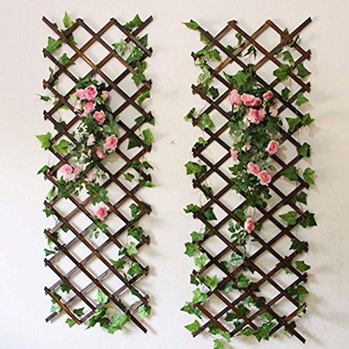 Youmu legno parete traliccio estensibile da giardino fiore pianta rampicante recinto marrone 150cmx30cm