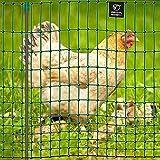 VOSS.farming Premium Hühnerzaun 112cm farmNET 50m | Hühnernetz Geflügelnetz Geflügelzaun | 16 Pfähle 2 Spitzen | Grün ohne Strom