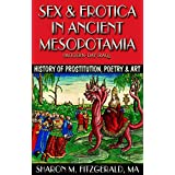 Sex & Erotica in Ancient Mesopotamia (Modern-day Iraq): History of Prostitution, Poetry & Art (The Art History Channel Book 2) (English Edition)