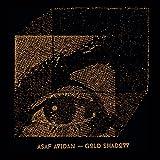 Songtexte von Asaf Avidan - Gold Shadow