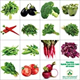 #7: Only For Organic Fifteen Winter Vegetable Seeds(6700+ Seeds)With Cocopeat Block & Instruction Manual