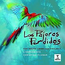Los Pajaros Perdidos : The South American Project