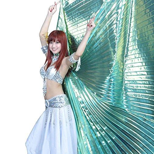Kostüm Für Irische Tanz Erwachsene - Wgwioo Erwachsene Bauchtanz Isis Wings 360 Grad Offen Portable Flexible Ohne Sticks Voll Exotische Kostüm Big Requisiten, D, 1