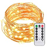 Waterproof Fairy String Lights Battery Operated Waterproof 8 Modes Twinkling 50 LED String Lights 16.4FT Copper Wire Firefly Lights Remote Control for Bedroom Wedding Festival Decor (Daylight White) (2 Lines)