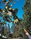 Fiskars Bypass Schneidgiraffe für frische Äste und Zweige, Antihaftbeschichtet, Gehärtete Stahlklinge/Aluminiumstiel, Länge 2,4 m, Schwarz/Orange, UP84, 1001557 Test