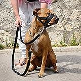 Perro hocico perro formación amigable hocico ajuste fácil para perros ajustable perro mascota boca cubierta bocas anti-mordiscos Barking cómodo perro bozal máscara