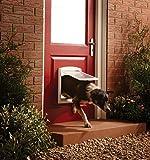 Petsafe 740SGIFD Porte avec Abattant à Fermeture Magnétique Blanc - Staywell à 2 positions pour chien moyen